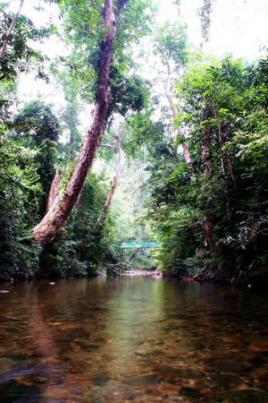 National Park Malaysia