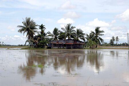 House on swamp Stock Photo