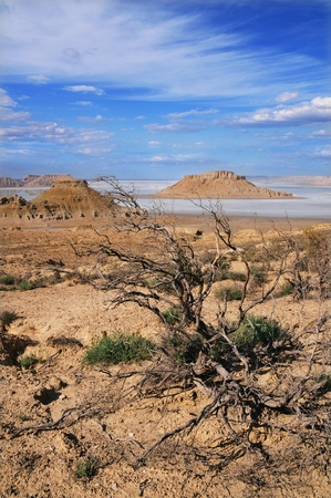 tethys: fantastic scenery on the plateau Ustyurt in Kazakhstan, depression Karynzharyk Stock Photo