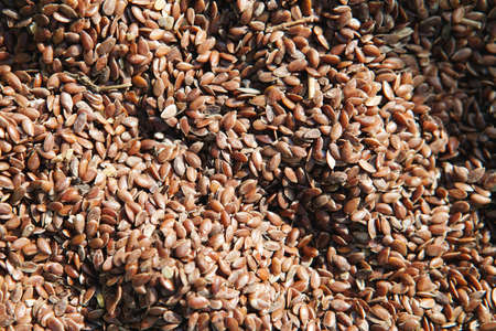 pumpkin seed: Grain of Flax