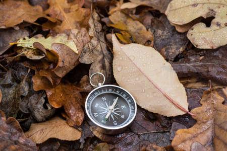 summer holidays: Compass