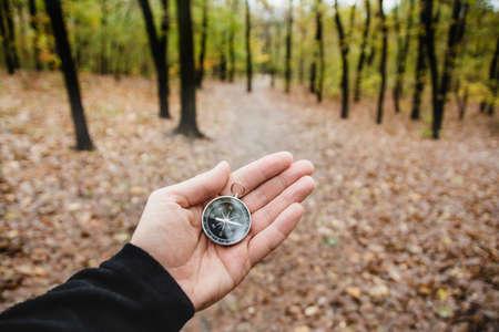 summer nature: Compass