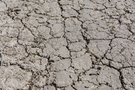 dehydration: dried earth