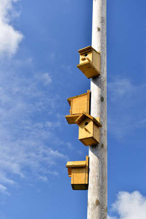 nesting boxes on a column against the blue sky Stock Photo