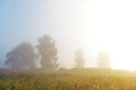 A bright sunrise in the village fog Stock Photo