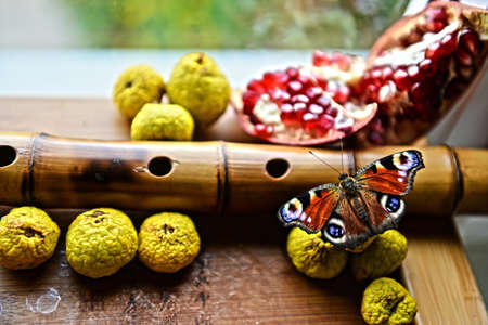 membrillo: Butterfly sitting on dried apples next to a bamboo flute and a pomegranate