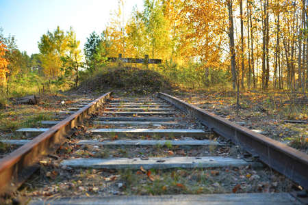 The end of the railway track in the autumn sunny forest