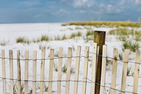 Landscape of sand fence and sea oats at the beach. Selective focus, sunny feeling Stock Photo - 2597244