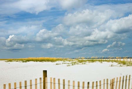 Beach, sea oats and big blue sky with sand fence in the foreground. Selective focus. Good background for ads, etc. Stock Photo - 2597243