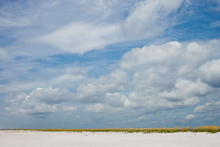 sea oats: Simple landscape of big blue sky and white sands with golden sea oats. Good background shot. Stock Photo