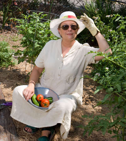 Mature woman harvesting tomatoes and cucumbers in her summer garden. photo