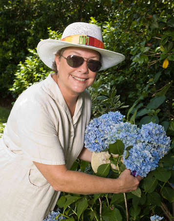 bush trimming: Smiling woman in sunglasses and straw hat picking big blue hydrangeas in her garden