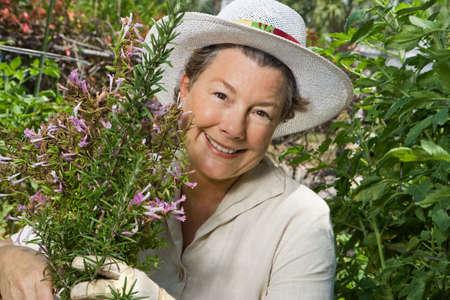Een gelukkig volwassen vrouw Vermageringen de rozemarijn in haar tuin. Closeup shot.