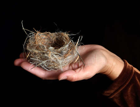 Birds nest with tiny white eggs in a womans outstretched hand on a dark background Stock fotó