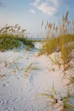 duna: Ruta de acceso en las dunas de arena en la playa al atardecer
