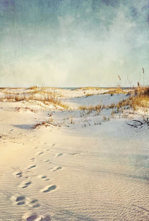Footprints in the sand dunes leading to the ocean at sunset  Soft artistic treatment with canvas texture, grain and brush strokes added for effect  Stock Photo