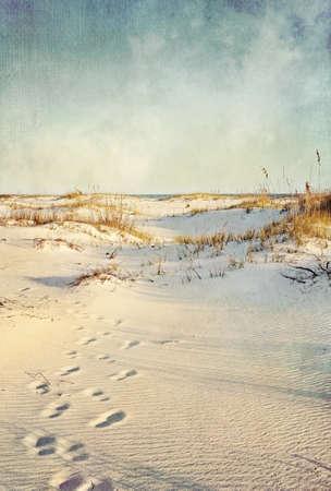 huellas de pies: Huellas en las dunas de arena que conducen a la mar al atardecer suave tratamiento artístico con textura de tela, movimientos de granos y un cepillo para el efecto añadido