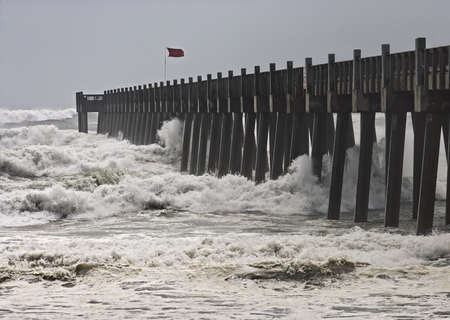 Hurricane winds move ashore at popular seaside resort in Florida. Фото со стока