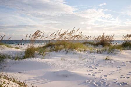 duna: Puesta de sol en las dunas de la playa de Pensacola, en Florida. Huellas en la arena en la puesta del sol del paisaje.