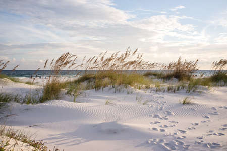 Sunset in the dunes at Pensacola Beach in Florida. Footprints in the sand at sunset landscape.