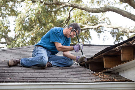 damaged roof: Man using crowbar to remove rotten wood from leaky roof  After removing fascia boards he has discovered that the leak has extended into the beams and decking