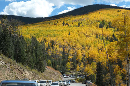 fe: Lines of cars crowd the road in Santa Fe National Forest for the annual golden aspen viewing in autumn. Stock Photo