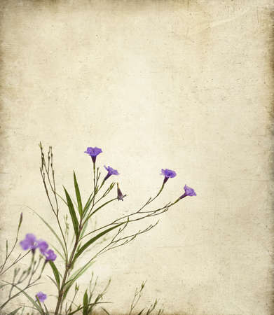 painterly: Delicate purple Ruella flowers on a textured canvas background with a painterly feeling  Useful for mother Stock Photo