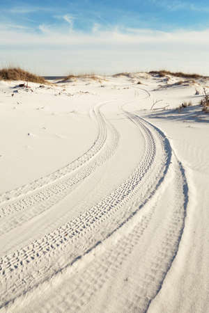 Tire tracks of national park rangers wind through pristine white sand dunes to the ocean  photo