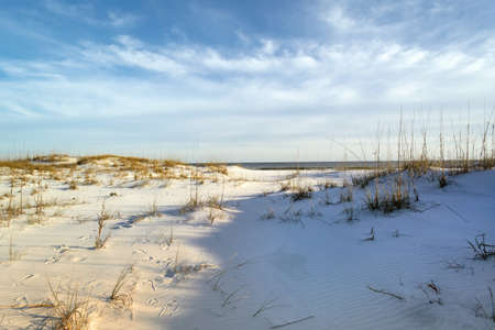 winter escape: Footprints in the Colorful Sand Dunes at the Beach Ocean