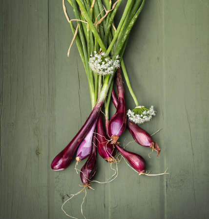onion flowers: Red Onions just picked from the garden on a wooden background.  Stock Photo