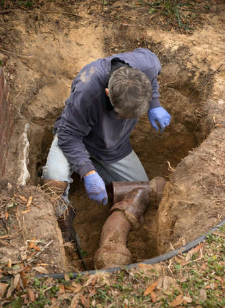 Man in a hole in the earth examining old clay sewer pipes that are infested with tree roots.
