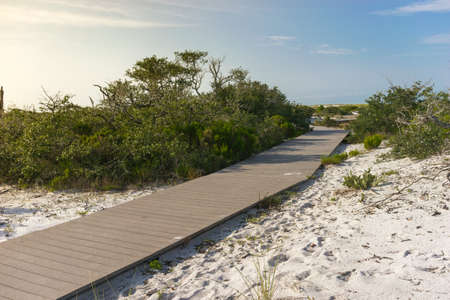 pensacola: Plank boardwalk through wetlands leading to beach in Pensacola, Florida, early morning, summer Stock Photo
