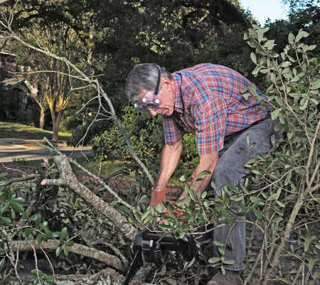 yard: Man in gloves and safety goggles cutting fallen branches and foliage debris after a storm Stock Photo