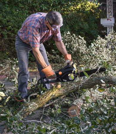 safety goggles: Man in gloves and safety goggles cutting fallen branches and foliage debris after a storm Stock Photo