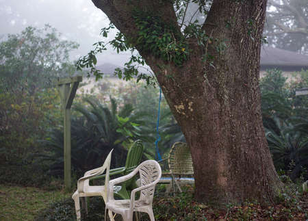 humid south: Mildewed plastic chairs surround a gigantic live oak tree witih resurrection fern growth in dense atmospheric fog in a typical inner city backyard in the Deep South USA. Stock Photo