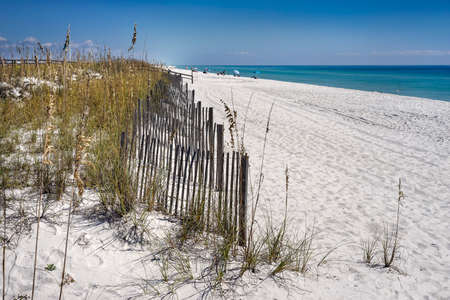 pensacola: Row of sand fences protect dunes from erosion on white sand beach in Florida on the Gulf of Mexico. Stock Photo