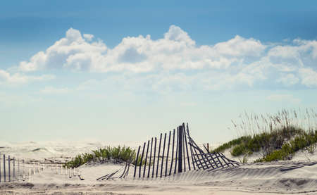 sea oats: Good background shot of puffy clouds and blue sky with sand fence in the dunes on a sunny day at Beach.
