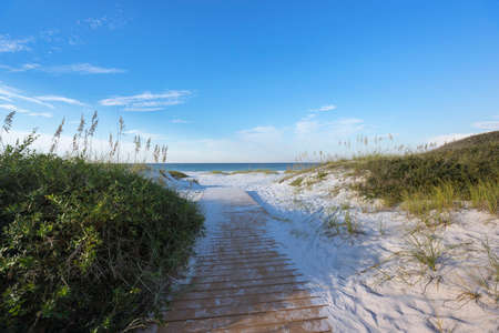 pristine: Boardwalk footpath through pristine sand dunes to the Gulf of Mexico in Pensacola, horizontal format