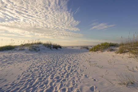 pensacola: Millions of footprints in the sand dunes in the early morning point the way to the Gulf of Mexico.