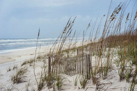 Landscape of crashing waves and tropical storm at Florida Gulf Coast beach with sand fence and sea oats.