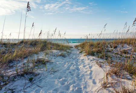 Landscape of sand dunes, sea oats and calm turquoise ocean surf in the rosy light of early morning.