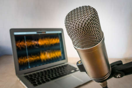 professional microphone and wave form on the screen