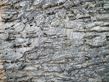dolomite:  stone texture or background