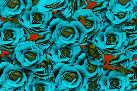 blue background: Blue rose abstract background