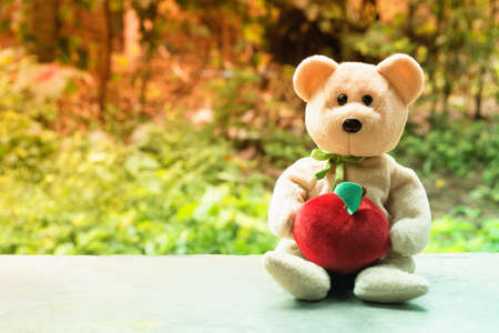 cute  bear doll   with green bokeh and sunshine  background Stock Photo
