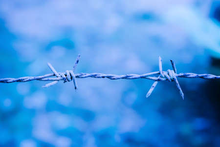 wire fence: Grunge Barbed wire with blue background Stock Photo