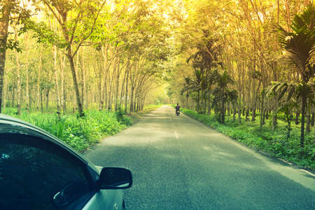 car and motorcycle travel on  green rubber plantation pathway  in Asia . Travel  concept  background.