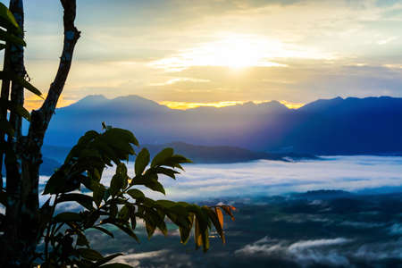 sunrise at the moutain  with tropical tree  nature wallpaper background