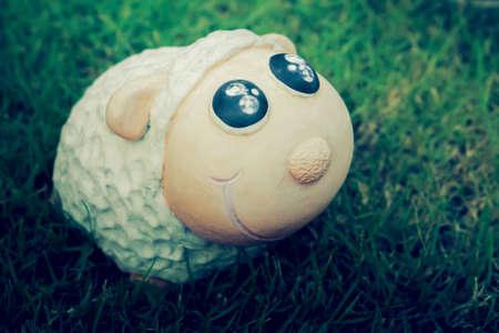 Cute sheep doll smile at sunrise in green grass field Stockfoto