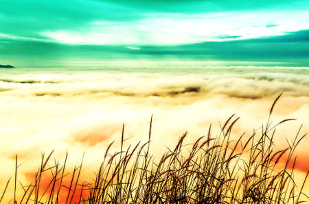 beautiful sea mist  with sky and clouds  nature wallpaper background